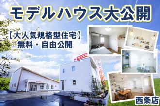 【ギフトカードプレゼント🎁】大人気❣ 規格型住宅を大公開✨【西条店】