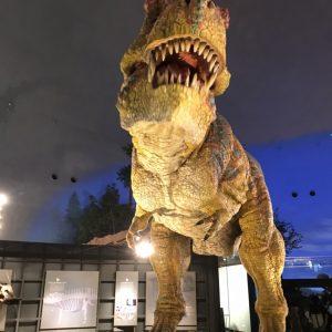 恐竜博物館🦕